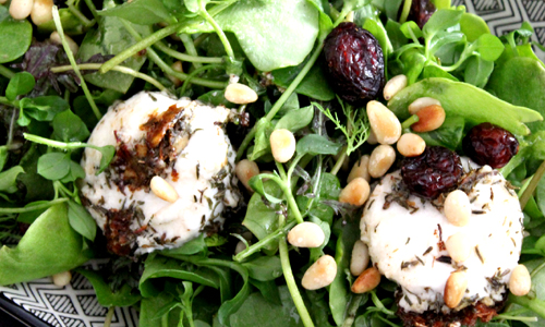 Gemischter Pflücksalat und Kräuter mit Ziegenfrischkäsetaler
